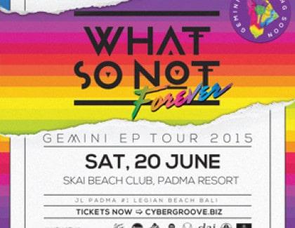 WHAT SO NOT – SKAI BEACH CLUB JUNE 20